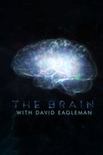 The Brain With Dr. David Eagleman: Season 1