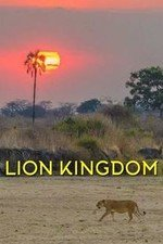 Lion Kingdom: Season 1